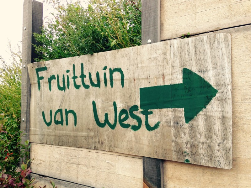 Fruittuin_van_West_12